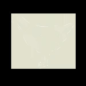 kippenvlees
